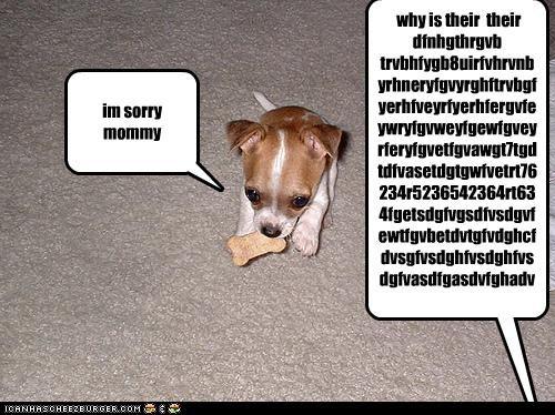 im sorry mommy why is their their dfnhgthrgvb trvbhfygb8uirfvhrvnbyrhneryfgvyrghftrvbgfyerhfveyrfyerhfergvfeywryfgvweyfgewfgveyrferyfgvetfgvawgt7tgdtdfvasetdgtgwfvetrt76234r5236542364rt634fgetsdgfvgsdfvsdgvfewtfgvbetdvtgfvdghcfdvsgfvsdghfvsdghfvsdgfvasdfgasdvfghadvfgadsvfdaghdghfghfghfghdfhtyrhtrhtrdhtrhthgsvdfghvfgdvgfvdgfdvgsfvdghvdffvgdevgasvgfasdvgsdvagfdvsgfvfdgfvasgdfvasdghfvasdghfvsdegfsdvghfvsdghfvsdfgasdvfgav