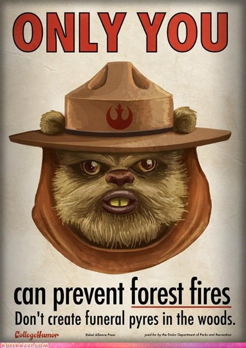 art ewok funny Hall of Fame sci fi star wars - 4583293440