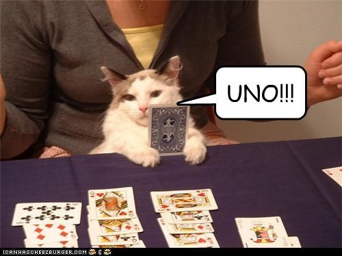 caption captioned card card game cat game shouting uno