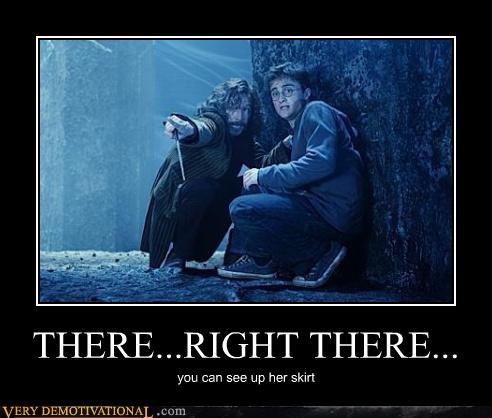Harry Potter Sirius up-all-night-cruisin-the - 4583977984