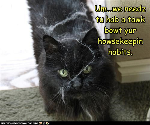 Um...we needz tu hab a tawk bowt yur howsekeepin habits.