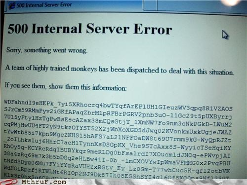 code,error,internal server,monkeys,server