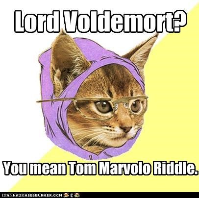 dark lord he who must not be named Hipster Kitty voldemort - 4584480512