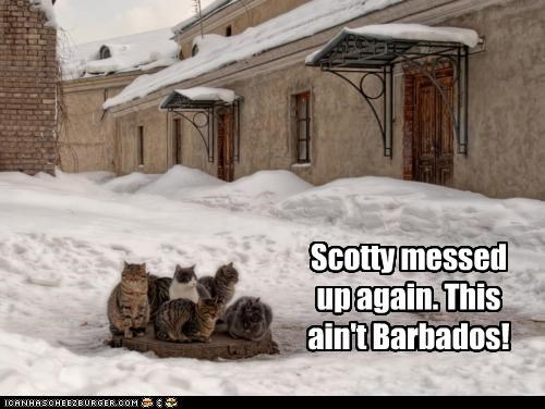 Scotty messed up again. This ain't Barbados!