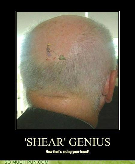 genius head homophone literalism mow parody rhyming row scalp shear sheer - 4585437440