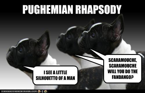 PUGHEMIAN RHAPSODY I SEE A LITTLE SILHOUETTO OF A MAN SCARAMOUCHE, SCARAMOUCHE WILL YOU DO THE FANDANGO?