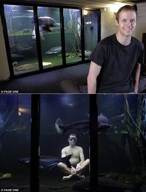aquarium Everybody Needs A Hobby Troy McClure - 4586034688