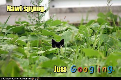 Nawt spying. Just G o o g l i n g.