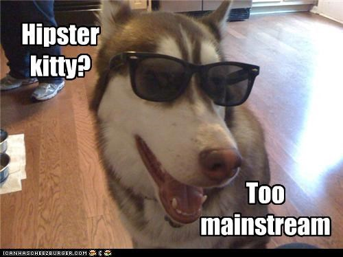 excuse,hipster,Hipster Kitty,husky,ironic,mainstream,pretentions,sunglasses,too