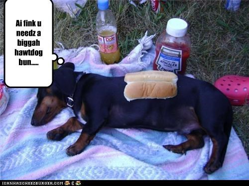Cheezburger Image 4586468096