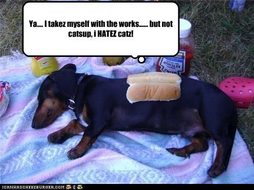 bun condiments dachshund hotdog ingredients request toppings works - 4586475264