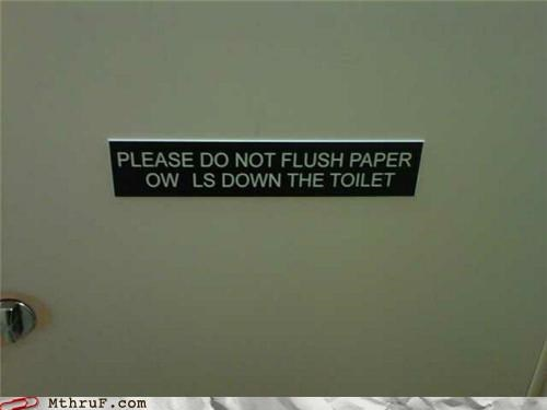 bathroom,flush,Owl,paper,sign,toilet