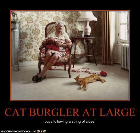 Cheezburger Image 4587413760