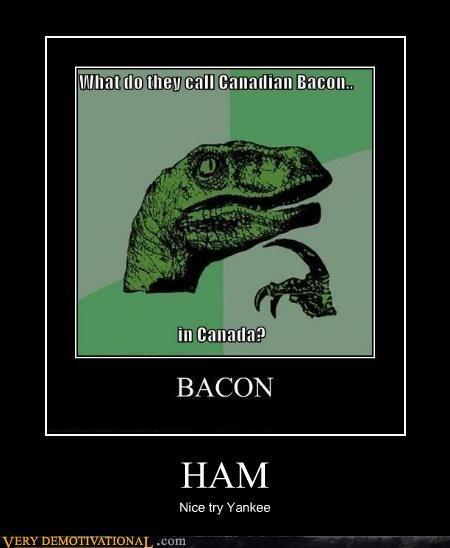 bacon,Canada,ham,philosoraptor