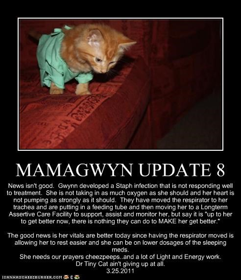 """MAMAGWYN UPDATE 8 News isn't good. Gwynn developed a Staph infection that is not responding well to treatment. She is not taking in as much oxygen as she should and her heart is not pumping as strongly as it should. They have moved the respirator to her trachea and are putting in a feeding tube and then moving her to a Longterm Assertive Care Facility to support, assist and monitor her, but say it is """"up to her to get better now, there is nothing they can do to MAKE her get better."""" The go"""