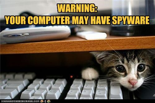 caption captioned cat computer double meaning Hall of Fame kitten peeking pun spy spying spyware warning - 4588611584