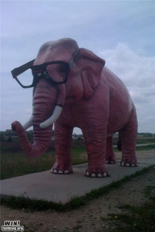 elephant glasses hacked hipster - 4589026560
