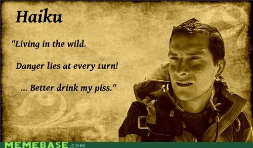 5-7-5 bear grylls haiku piss - 4589527808
