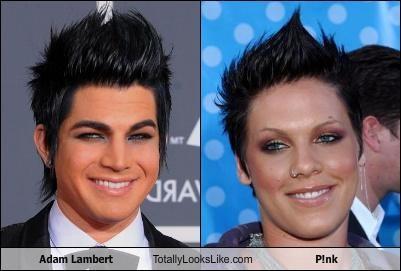 adam lambert,hair,pink,singers