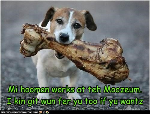 Mi hooman works at teh Moozeum. I kin git wun fer yu too if yu wantz