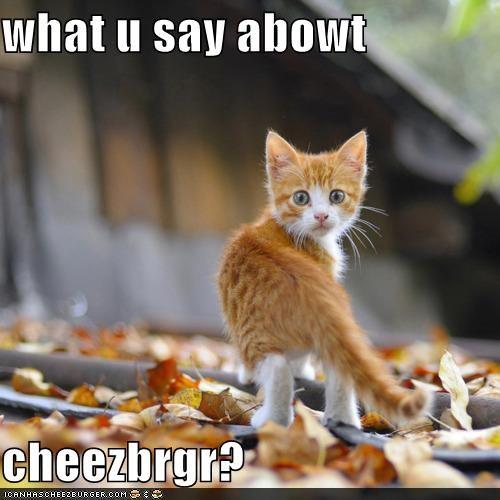 Cheezburger Image 4592259328