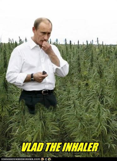 Hall of Fame marijuana Pundit Kitchen Vladimir Putin vladurday - 4593365504