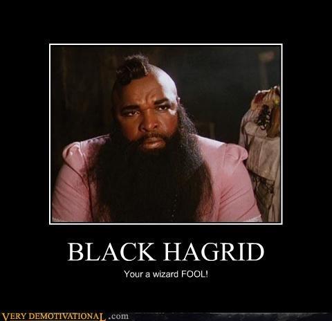 Hagrid Hall of Fame Harry Potter mr t - 4594159104