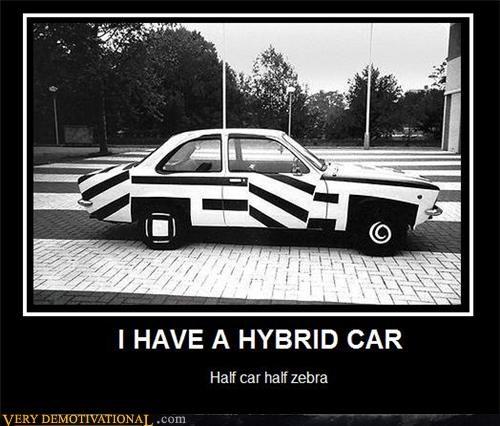 car hybrid zebra