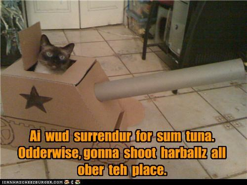 caption,captioned,cat,conditions,hairballs,negotiating,negotiations,surrender,tank,threat,tuna,weapon