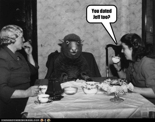 animal funny historic lols ladies Photo sheep - 4595248640