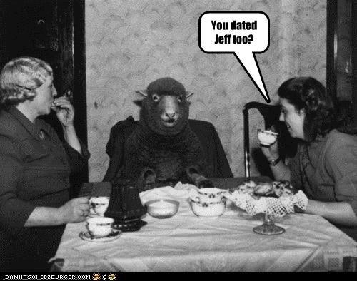 animal funny historic lols ladies Photo sheep - 4595248640