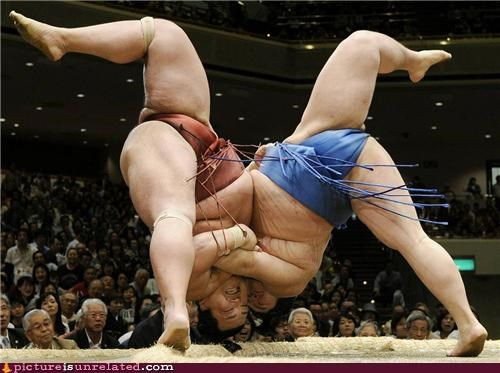crotch grab,falling over,sumo wrestling,wtf