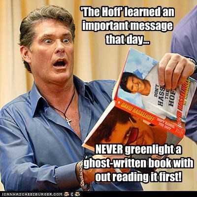 actor celeb david hasselhoff funny - 4596169728
