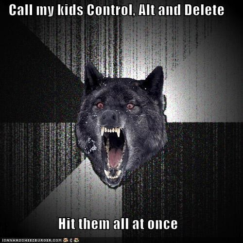 Call my kids Control, Alt and Delete Hit them all at once