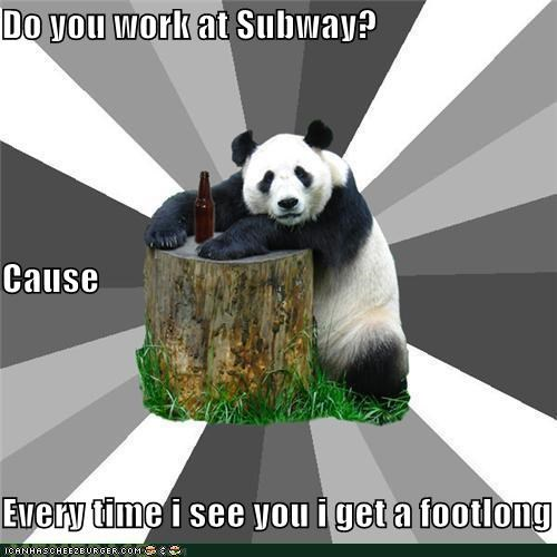 Bad Pickup Line Panda footlong Subway - 4596908288