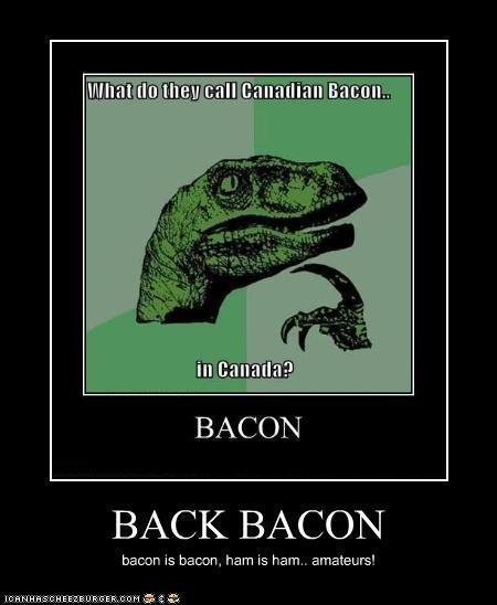 BACK BACON bacon is bacon, ham is ham.. amateurs!