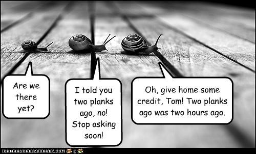 Are we there yet? I told you two planks ago, no! Stop asking soon! Oh, give home some credit, Tom! Two planks ago was two hours ago.