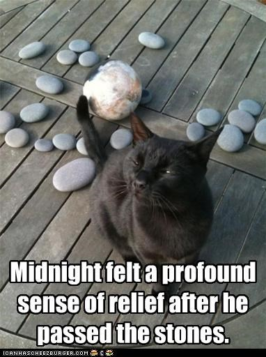 after caption captioned cat double meaning felt passed passing profound pun relief sense stones