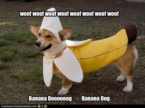 woof woof woof woof woof woof woof woof Banana Doooooog - Banana Dog