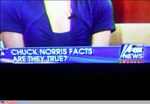chuck norris fox news political pictures - 4598639104