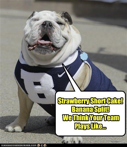 bulldog,cheer,cheering,cheerleader,dressed up,insinuation,jersey,rhyme,sports