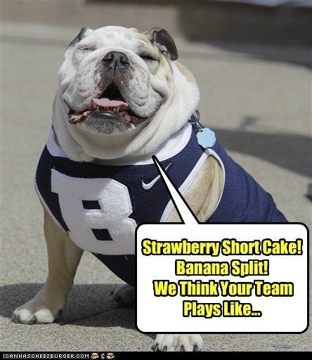 bulldog cheer cheerleader dressed up jersey rhyme sports - 4599156992
