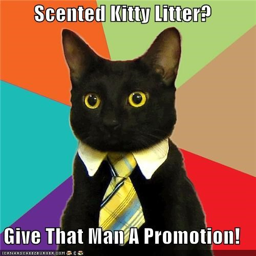 Business Cat kitty litter promotion scented