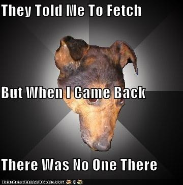 Depression Dog,ditched,fetch,so lonely