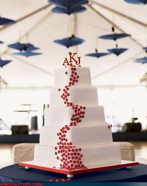 funny wedding photos,ladybugs,wedding cake