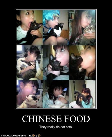 CHINESE FOOD They really do eat cats.
