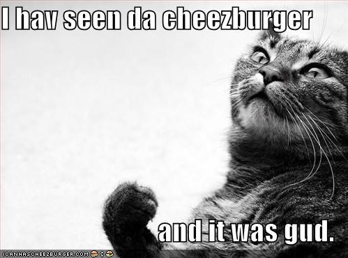 Cheezburger Image 460013824