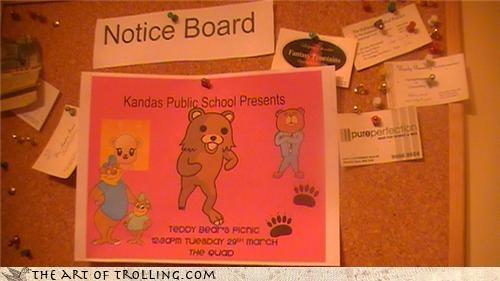bear,IRL,pedobear,picnic,teddy bear