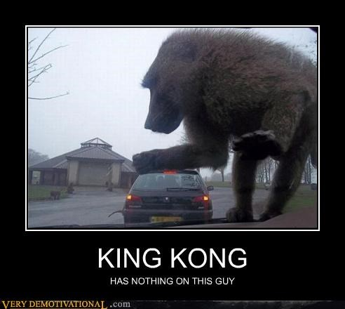 huge king kong monkey