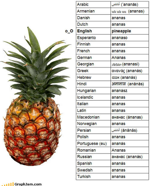 banana english fruits infographic languages pineapples - 4601357824